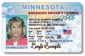 MN driver's license sample